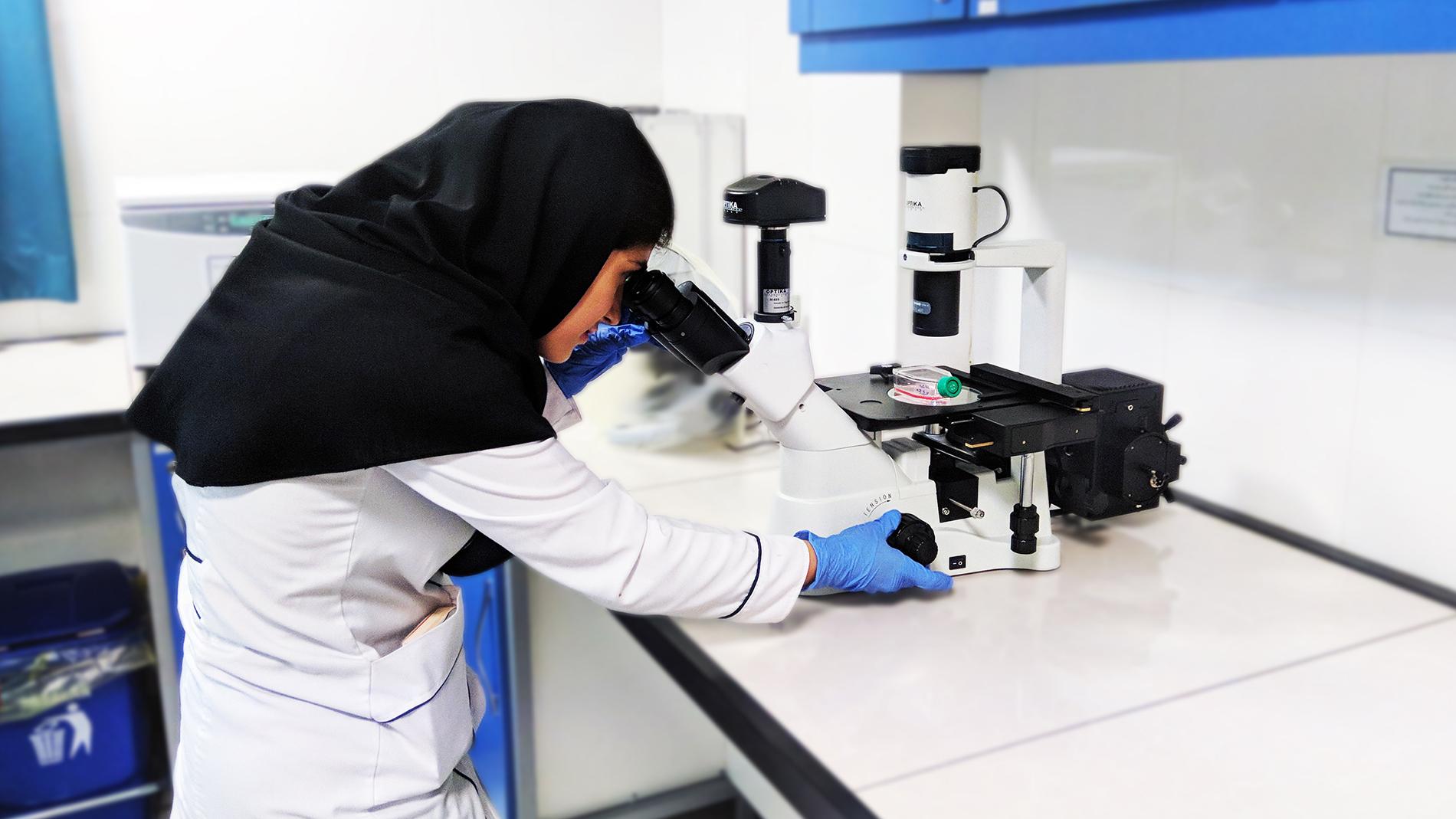 میکروسکوپ چیست؟