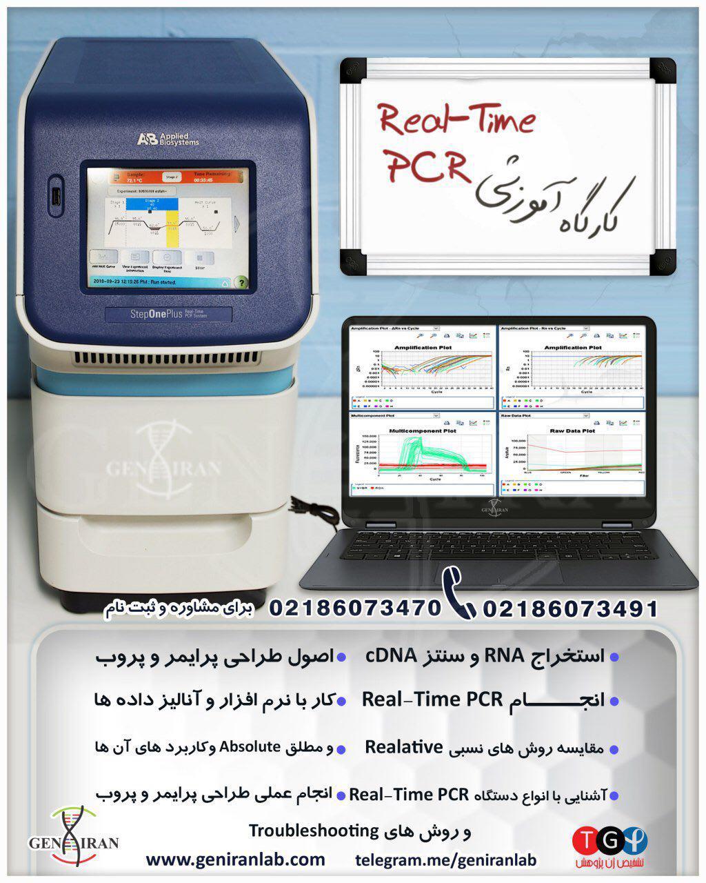 آموزش Real time pcr