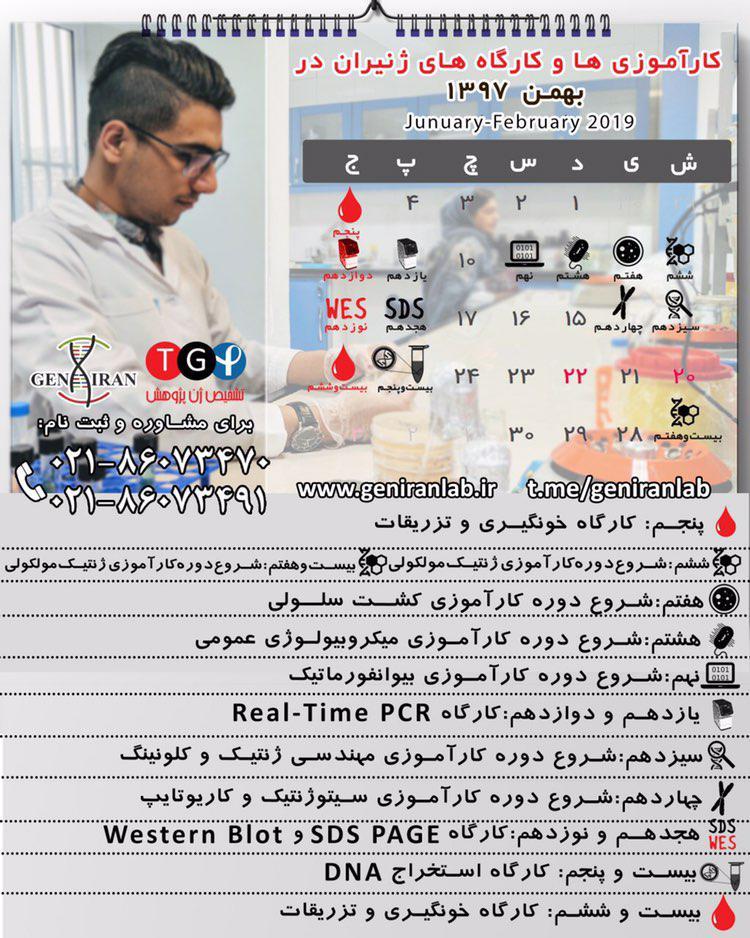کارآموزی آزمایشگاه در بهمن ماه 97
