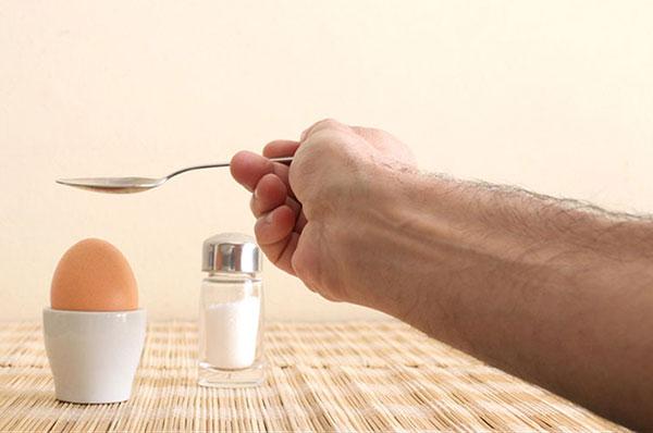 متابولیت تخم مرغ