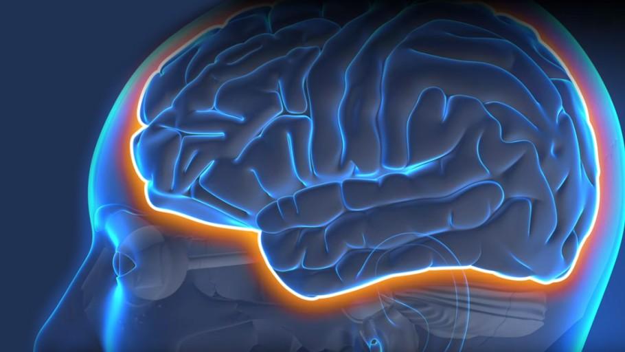 انتقال دارو به مغز