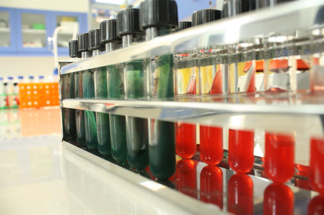 میکروبیولوژی-محیط کشت-باکتری